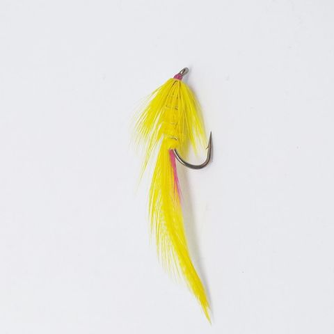 Yellow Lady Fly