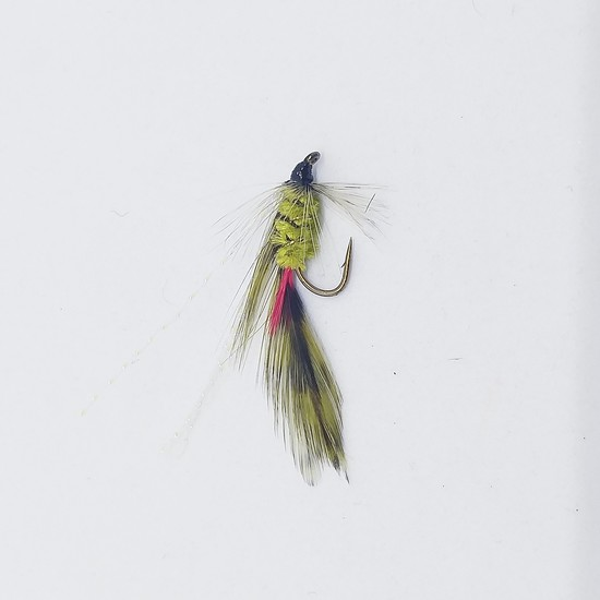 Parsons Glory Wet Fly